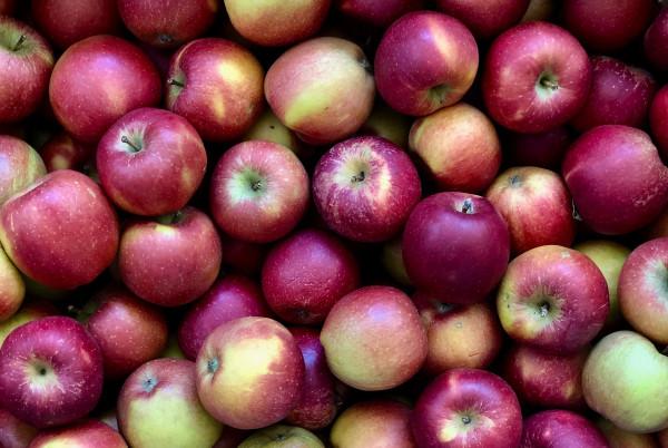 Pommes 2ème Choix