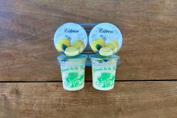 Yaourt Citron
