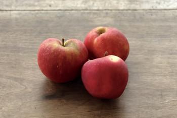 Pomme Elstar